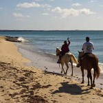 Take a ride with Paul & Jill's Horseback Tours through the Rain Forest and along the shore